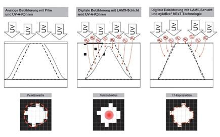 Einfluss des Sauerstoffs auf die Punktübertragung während der Hauptbelichtung